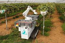 "Commercial strawberry-picking robot developers expect widespread adoption ""within three years"""
