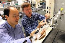 Researchers isolate wine and vinegar chemicals which best lure spotted-wing Drosophila