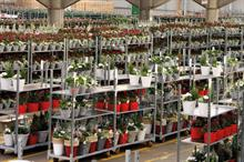 The Charles Notcutt Retail Plant Supplier of the year - Winner: Farplants