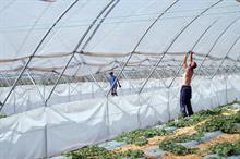 Future shape of an ideal seasonal worker scheme