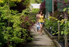 Home ownership fall among under 35s poses challenge to garden market