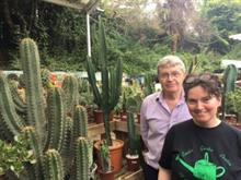 Cacti trend sees garden centre increase sales