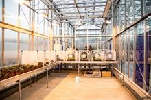 New research glasshouse and automated farming trial for Harper Adams