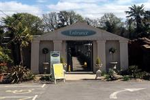 Sharing knowledge: latest from Hambrook Garden Centre