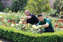 Trailblazer horticulture training set to go live