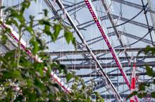New research glasshouse at Stockbridge will compare light regimes on tomatoes