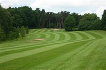 """Massive"" increase in grass density for Market Drayton GC"