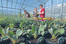 Will vocational courses meet horticulture industry's needs?