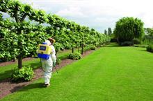 Amenity Forum welcomes ECHA glyphosate decision
