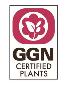 Standards body Global GAP extends online portal to include ornamental plants