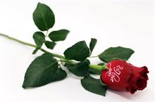 Tesco to sell printed Valentine's Day roses
