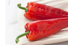 Rijk Zwaan to highlight new sweet and versatile pepper at Berlin show