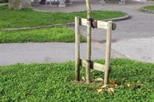 Tree stakes and ties