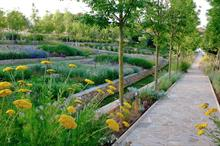 James Basson wins Society of Garden Designers grand award