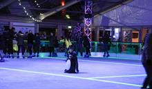 Van Hage garden centre launches Arena Ice's under-ice LED technology