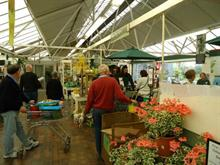 GCA finds food up but seed down at garden centres