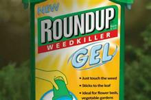 Roundup welcomes glyphosate approval