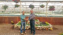 Hishtil buys Ringel Nurseries' dianthus activities