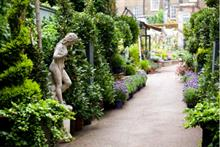 David Morley and Dennis Espley take roles at Clifton Nurseries