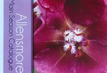 Allensmore Nurseries launches 40 new plants in catalogue