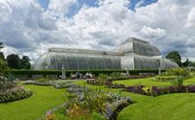 Kew wins funding reprieve on the eve of select committee grilling