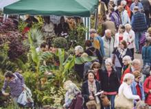 Walkden and Flowerdew for Buckland garden festival
