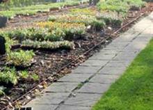 PlantNetwork analysis reveals gardener average salary range