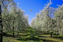 Gove backs agri-innovation for post-Brexit UK farming