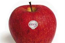 New Zealand-bred red apple launches on European market
