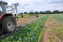 Trials show promise of automated topical herbicide application