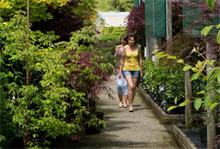 September sees garden centre sales rise