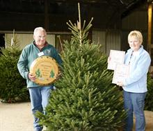 Dinmore Hill and Allensmore Nurseries win Christmas trees competition