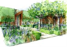 Hare Spring and Todd's Botanics to supply Beardshaw Chelsea garden