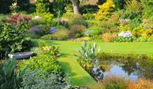 Beth Chatto reissues classic planting guide