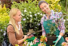 Key Note forecasts 1.2 per cent growth for garden retail in 2016