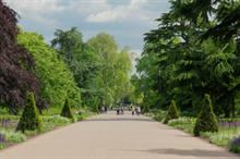 Prince Charles becomes Kew patron as broad walk borders open