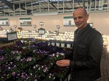 WD Smith annual pansy festival shows continued breeding advances