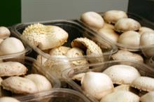 End of HDC Mushroom Panel as British Growers Association takes helm at new mushroom grower group