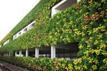 Living wall, National Grid, Warwick