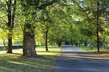 Parks funding solutions for cash-strapped local authorities