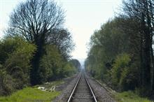 Network Rail suspends tree removal work after failing to consult residents