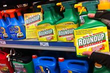 European science experts debate glyphosate