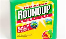 US advisory panel sets date to review evaluation of carcinogenic potential of glyphosate