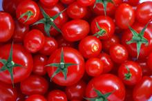 Tomatoes can have role in preventing prostate cancer in men, UK research shows
