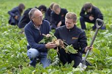 First cohort of Sainsbury's horticulture apprentices take up places with growers