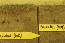 Wetting agent trials show reduction in thatch layer