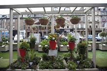 Dobbies garden centres launch 'parklets' in Edinburgh