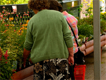 Garden retail sales in Europe up in first half of 2014 thanks to mowers and chemicals