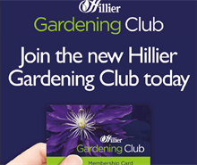 Hillier garden centres relaunches gardening club for customers