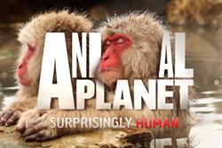 Discovery launches new Animal Planet look